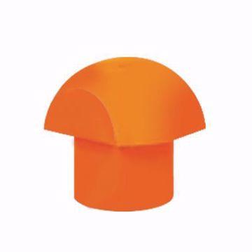 تصویر از کلاهک قارچی نارنجی